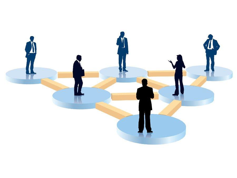 Organization Design for Business