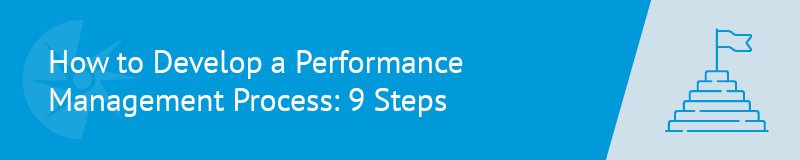 There are nine steps to developing an effective performance management system.